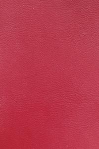 Красный (гладкая кожа)