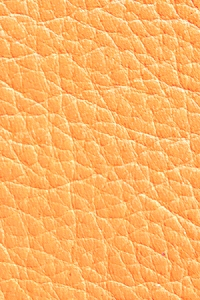 Горчица (фактурная кожа)