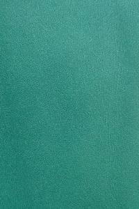 Зеленый (гладкая кожа)